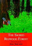 The Sacred Redwood Forest