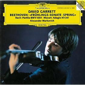 J.S. Bach: Partita For Violin Solo No.2 In D Minor, BWV 1004 - 3. Sarabande