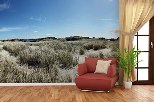 Premium XXL Vliestapete Dünen mit Gras und kleiner Ortschaft - Größe: 400 x 267 cm - 4