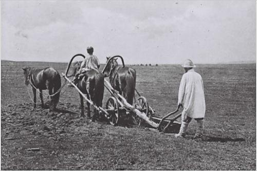 A farmer with a very old fashioned three horse plough, Ural, beginning of 1900s.