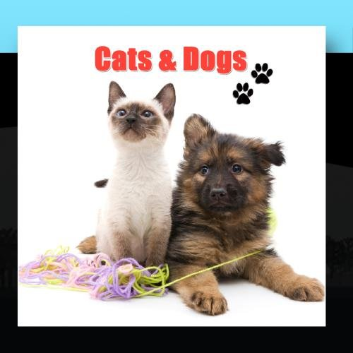 Cats & Dogs - Cats & Dogs