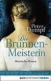 Image de Die Brunnenmeisterin: Historischer Roman