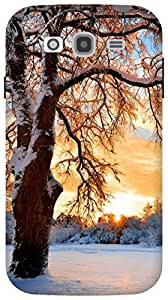 The Racoon Grip Snowy Tree hard plastic printed back case / cover for Samsung Galaxy Grand Neo