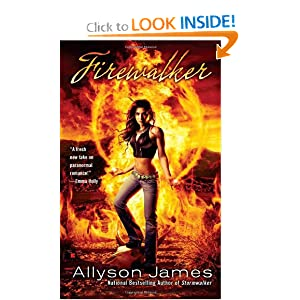 Firewalker (Stormwalker, Book 2) Allyson James