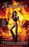 img - for Firewalker (Stormwalker, Book 2) book / textbook / text book