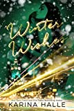 Winter Wishes (English Edition)