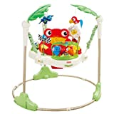Fisher-Price Baby Gear - K7198 - Rainforest Jumperoovon &#34;Fisher-Price&#34;