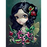 """Carnivorous Bouquet Fairy by Jasmine Becket-Griffith 12""""x9"""" Art Print Poster by Bruce McGaw"""