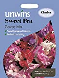 Unwins Pictorial Packet - Sweet Pea Galaxy Mixed - 35 Seeds