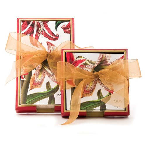 Cheap Michel Design Works Hostess Napkin Gift Set (NAPHTS144-PARENT)