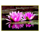 Leaf Designs Pink Double Lotus Table Mats - Set Of 6