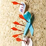 Design Ideas Archery Push Pins, Set of 8 Orange Arrows Model: Office Supply Store