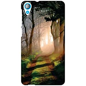 HTC Desire 820Q Back Cover - All Lies In Nature Designer Cases