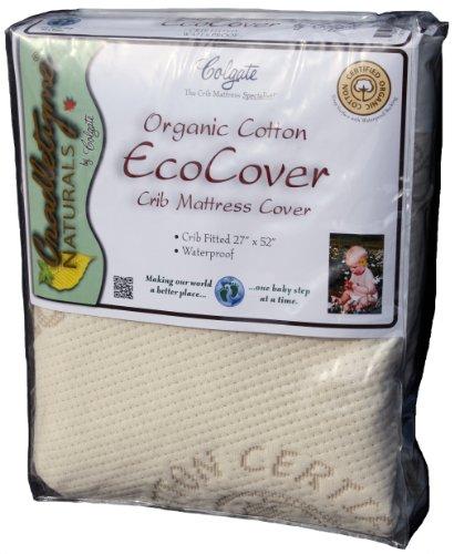 Colgate Organic Cotton Crib Fitted Mattress Cover, Ecru