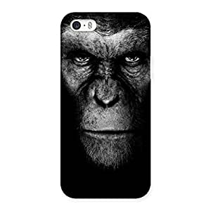 Black King Chimp Back Case Cover for iPhone 5 5S
