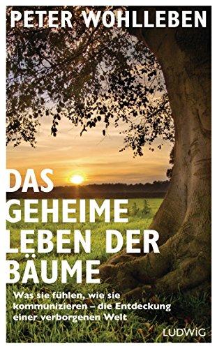 Das geheime Leben der Bäume: Was sie fühlen, wie sie kommunizieren - die Entdeckung einer verborgenen Welt das Buch von Peter Wohlleben - Preise vergleichen & online bestellen
