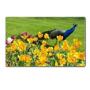 Amazon.com : Peacock Peafowl Pavo Birds Park Table Mats Customized