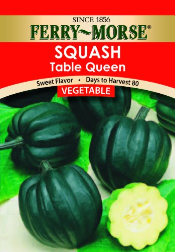 Ferry morse table queen acorn squash seeds food beverages for Table queen squash