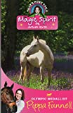 img - for Magic Spirit the Dream Horse book / textbook / text book