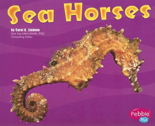 Sea Horses: Under the Sea (Under the Sea (Capstone Paperback))