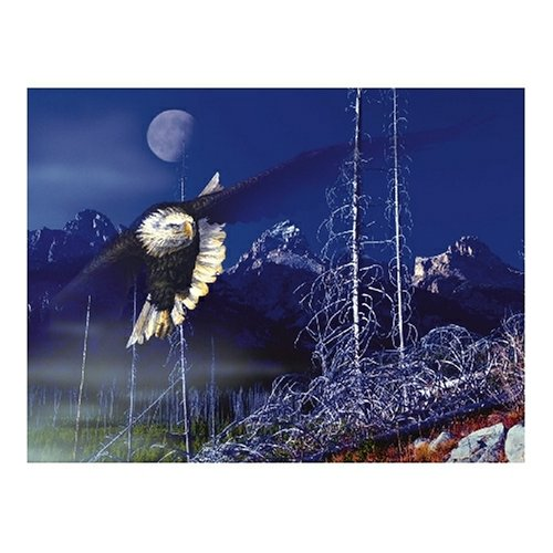 Sunsout Misty Moonlight 500 Piece Jigsaw Puzzle