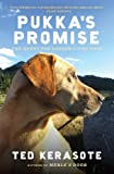 Pukkas Promise: The Quest for Longer-Lived Dogs