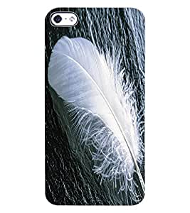 ColourCraft Feather Design Back Case Cover for APPLE IPHONE 4