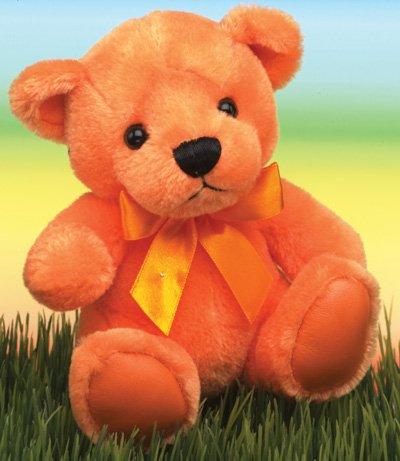 First & Main 1585 Orange Rainbow Bear