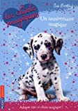 echange, troc Sue Bentley - Les chiots magiques, Tome 5 : Un anniversaire magique