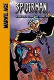Spider-Man and Storm: Change The Weather (Spider-Man Team Up) (1599610035) by Dezago, Todd