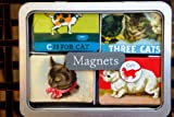 Cats Fridge Magnets by Cavallini