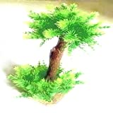 Veena Artificial bonsai of fir tree for good finances