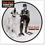 Diamond Dogs 40th Anniversary