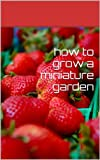 how to grow a miniature garden