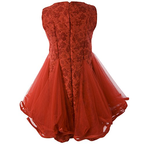 Ipuang Little Lovely Lace Flower Girl Dress for Special Occasion 10 Red