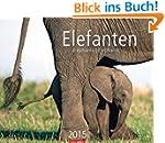 Elefanten 2015