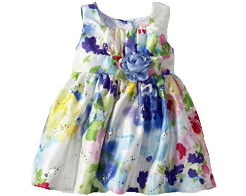 Youngland Baby-Girls Infant Multi Floral Hologram Dress, Multi, 12 Months back-80576
