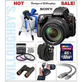 Sony DSLR-SLT-A55VHZ 16.2MP Digital SLR with Translucent Mirror Technology and 3D Sweep Panorama Combined with Sony DT 18-250mm f/3.5-6.3 Lens (SAL18250) + 32GB Flash Memory Starter Pack #1