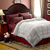 51Kb3vobmXL. SL160  Pacific Coast Feather Medium Warmth Down Comforter   King