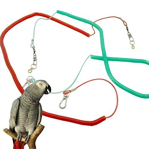 Wildgirl Pet Puppy Bird Flying Training Rope Leash Lead Harness (XXL) (Cockatiel Flight Harness compare prices)