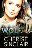 Winter of the Wolf (The Wild Hunt Legacy Book 2) (English Edition)