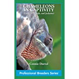 Chameleons in Captivity