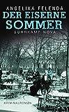 Der eiserne Sommer: Reitmeyers erster Fall. Kriminalroman (suhrkamp taschenbuch)