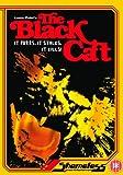 echange, troc Black Cat [Import anglais]