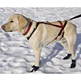51KcWsY 2oL. SL160  Adjustable Pulling Harness   Huge (dogs 75 120 lbs) Reviews