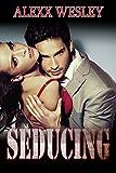 ROMANCE: SEDUCING (An Alpha Billionaire Romance)