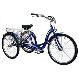 Schwinn Meridian Adult 26-Inch 3-Wheel Bike (Blue): Amazon ...