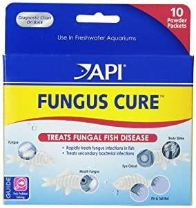 API Fungus Cure Powder, 10-Count