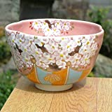 醍醐の桜抹茶茶碗 剛