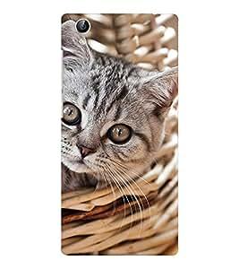 EPICCASE worderful kitty Mobile Back Case Cover For Vivo Y51 (Designer Case)